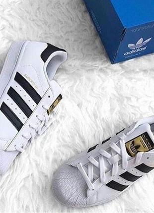 Tênis adidas superstar foundation replica