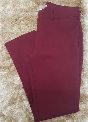 Calça marsala plus size #blackfriday